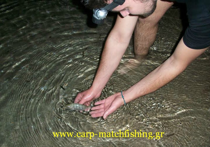 mourmoura-beach-ledgering.catch-and-release