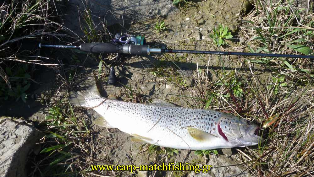 lrf-rod-trout-spinning-carpmatchfishing