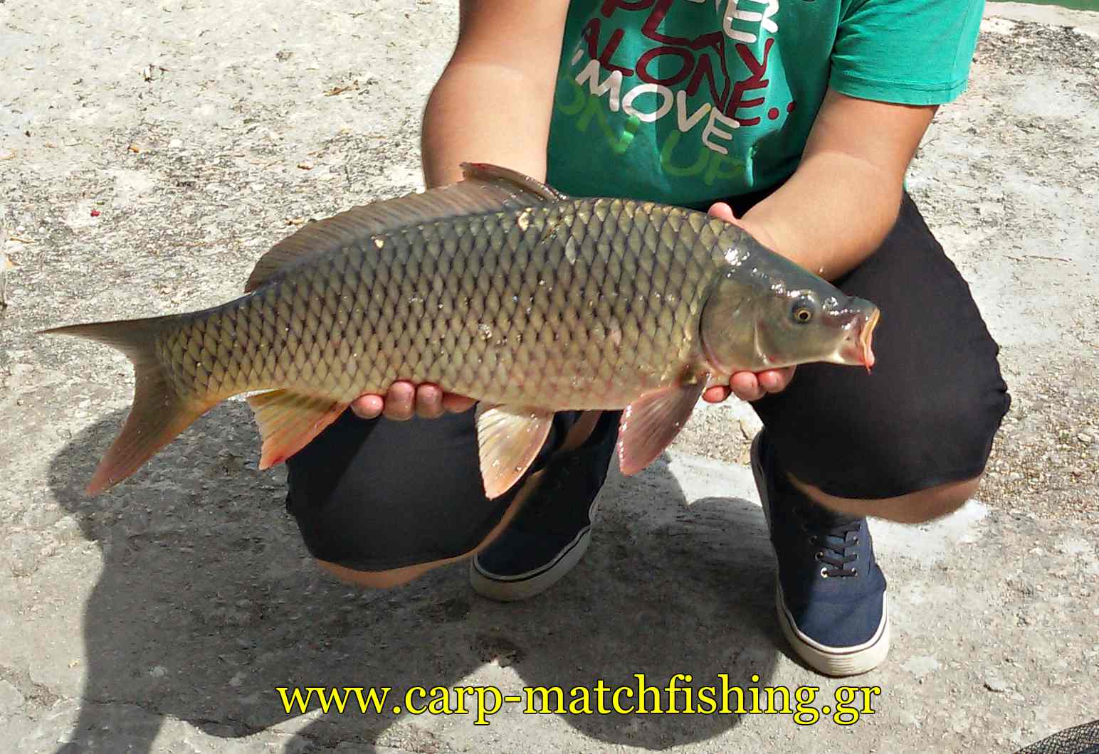 carp-short-sessions-carpmatchfishing