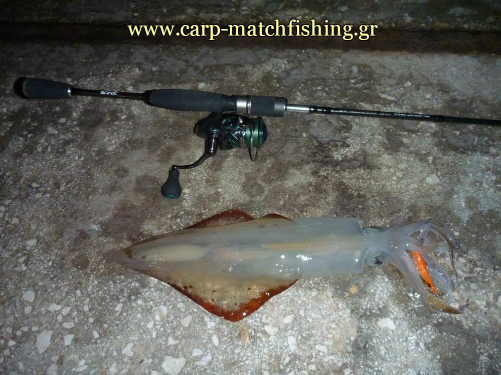 lrf-eging-rod-carpmatchfishing