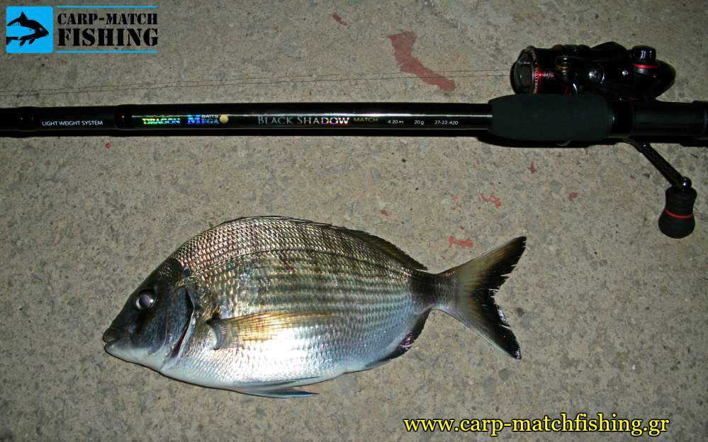 sargos match rod ts carpmatchfishing