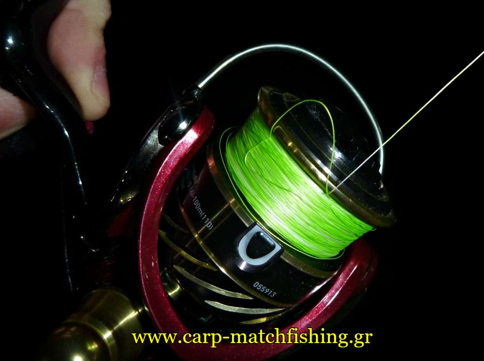 bid-nest-in-the-reel-spool-carpmatchfishing