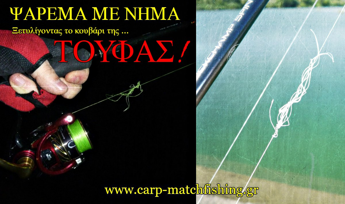 spinning-toufes-bird-nests-braid-carpmatchfishing