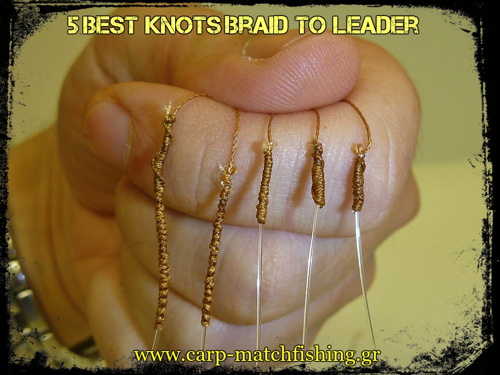 5-best-knots-braid-to-leader-carpmatchfishing