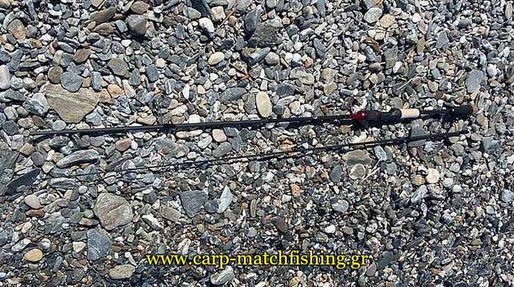 sonik-avx-rod-all-carpmatchfishing