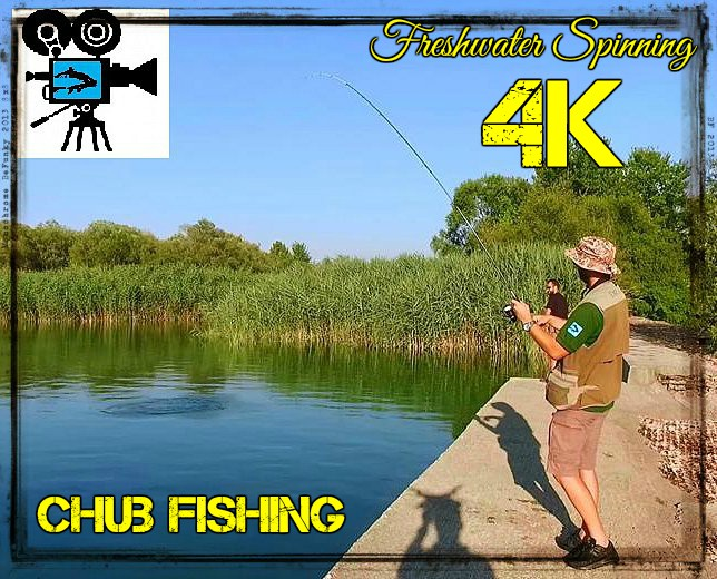 video-4k-freshwater-spinning-for-chub-carpmatchfishing