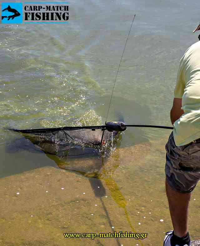 carp net agonas giannena carpfishing pamvotida lake carpmatchfishing