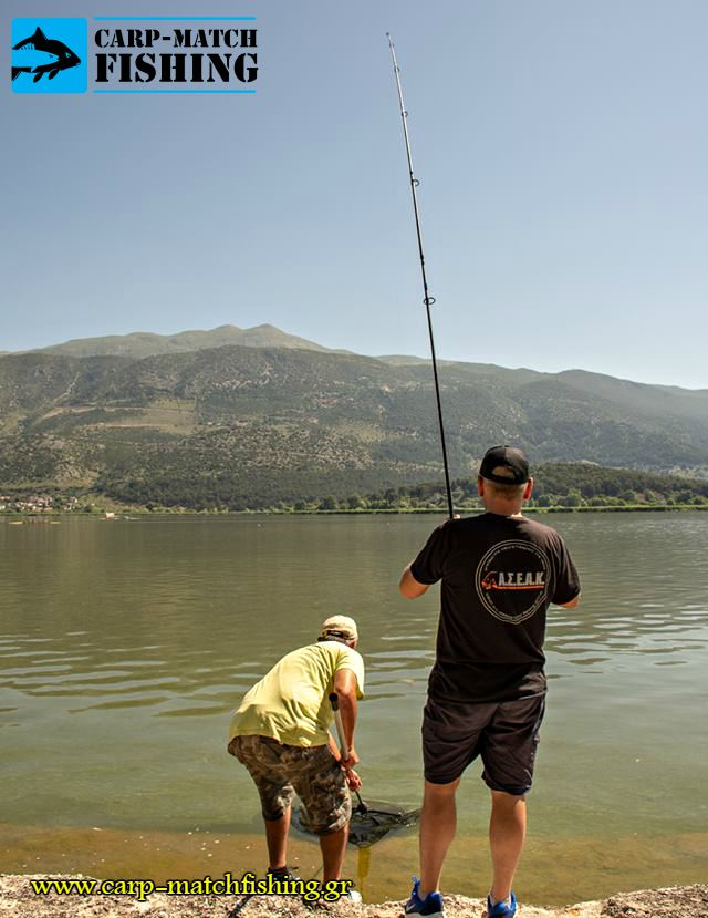 pamvotida lake agonas carpfishing netting carp carpmatchfishing