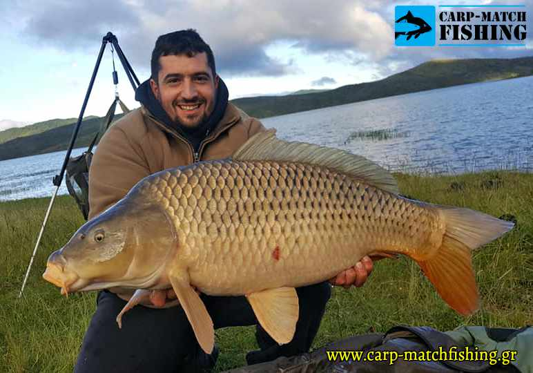 aoos big carp common xatz agonas carpfishing carpmatchfishing