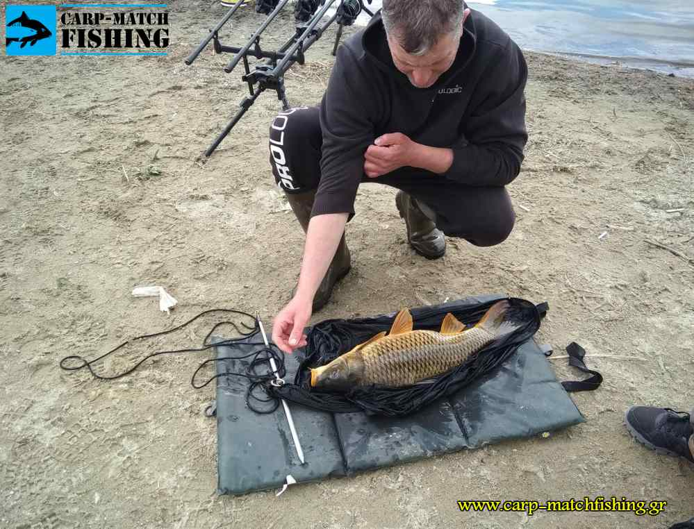 festival carpfishing mat carpmatchfishing