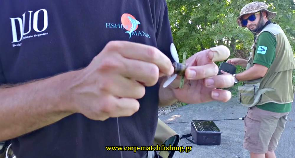 limni-spinning-bee-free-3-carpmatchfishing