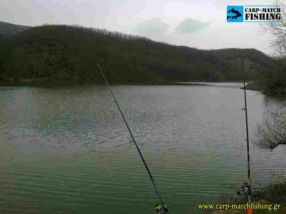 fragma mayraneoi carpmatchfishing