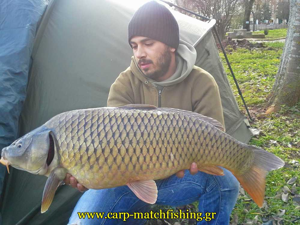 carp-pamvotida-lake-carpmatchfishing