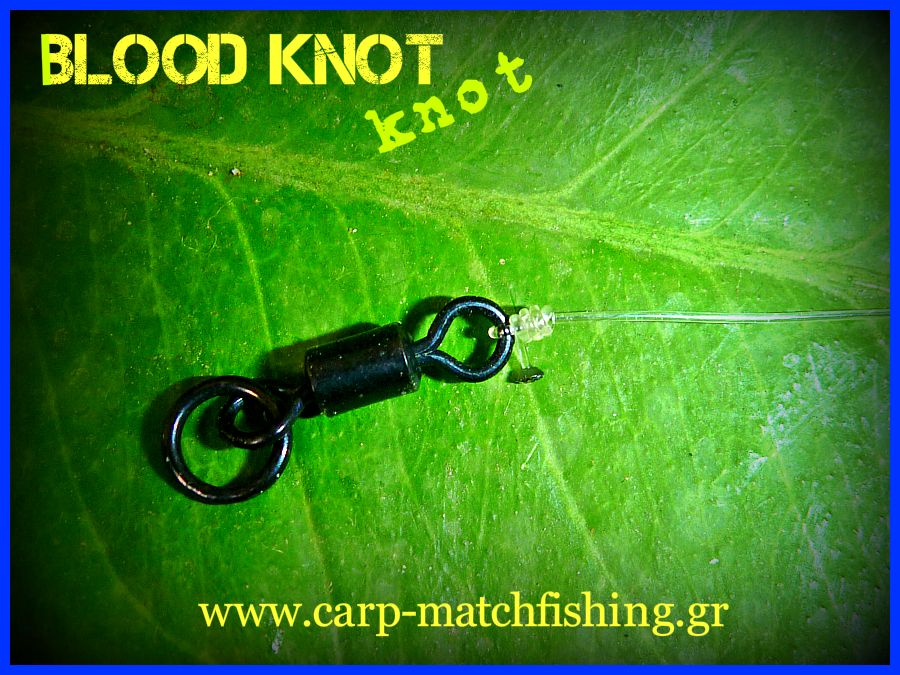 blood-knot-carp-matchfishing-gr.jpg
