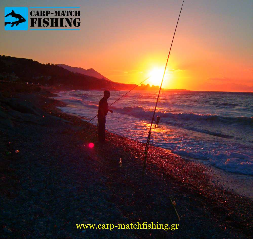 casting in sunset sargoi carpmatchfishing