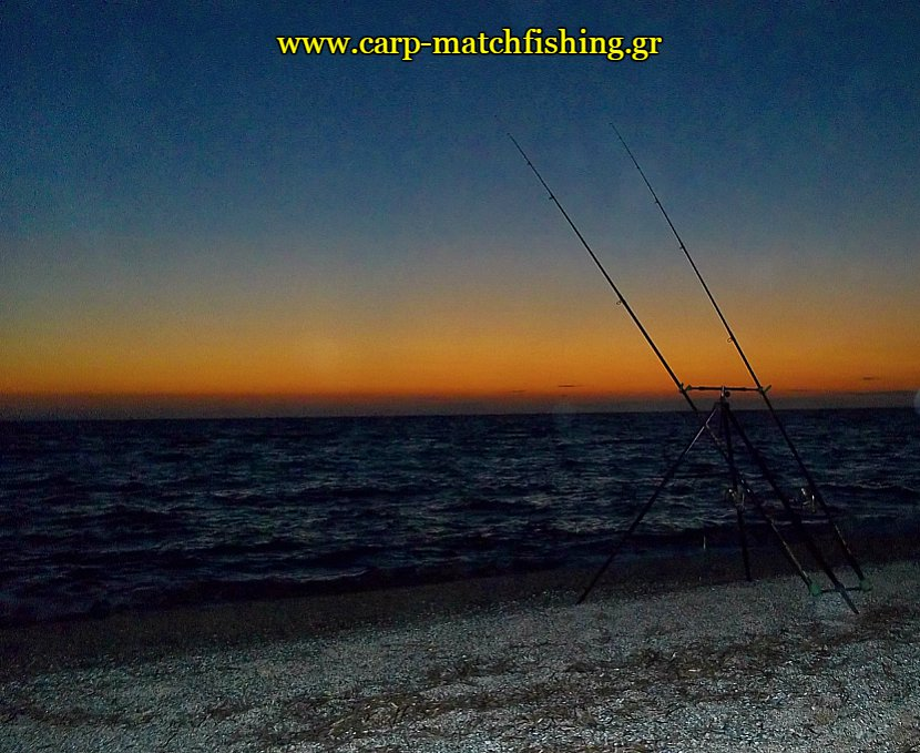sunset-gofaria-casting-carpmatchfishing