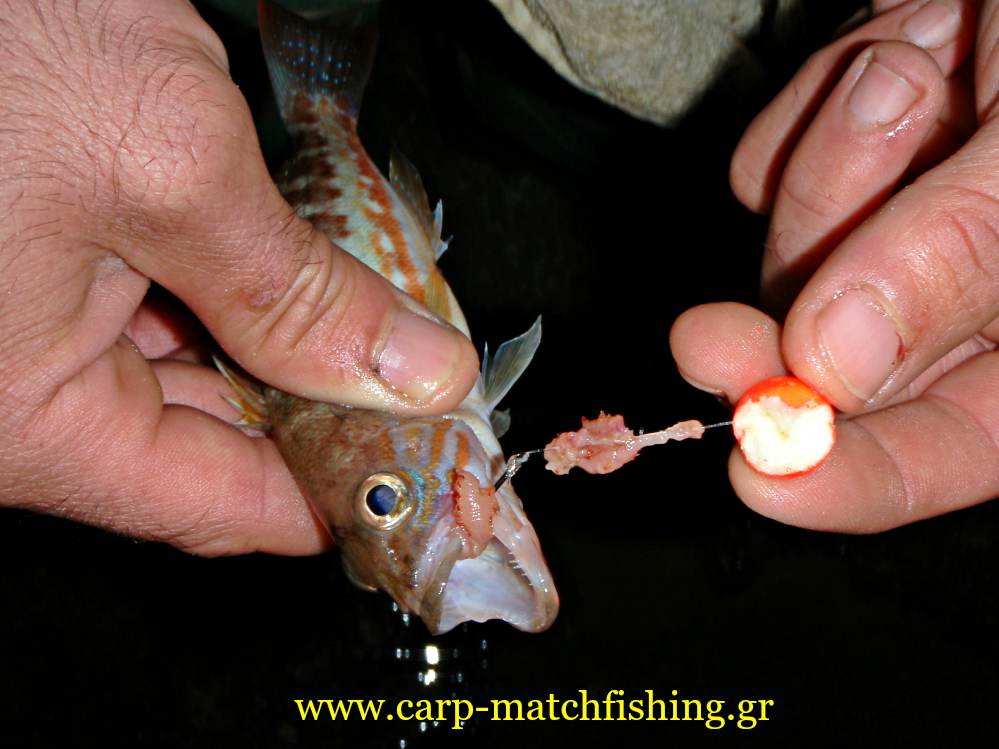 rock-fishing-xanos-carpmatchfishing