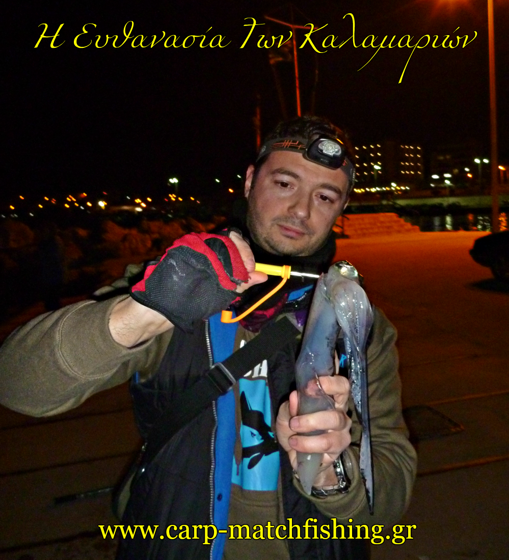 killing-the-squid-pike-egi-oh-ika-shime-eging-carpmatchfishing.gr