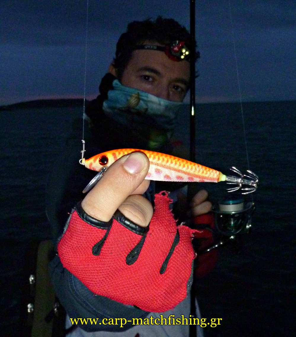 eging squid minnow sfaltos carpmatchfishing