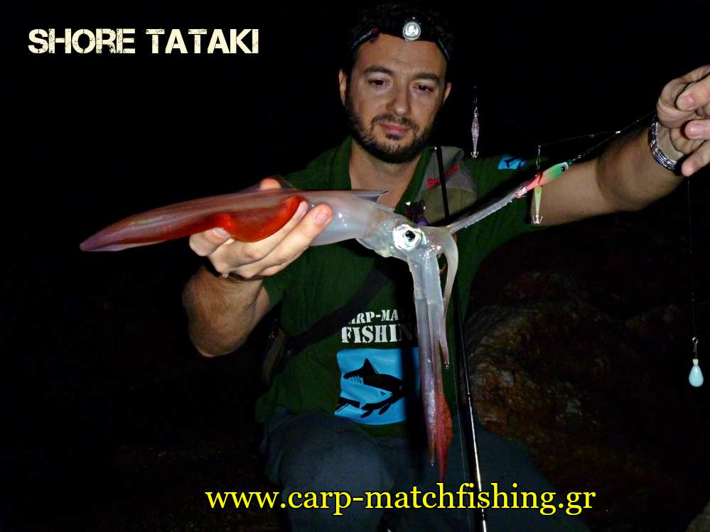 shore-tataki-eging-squid-carpmatchfishing