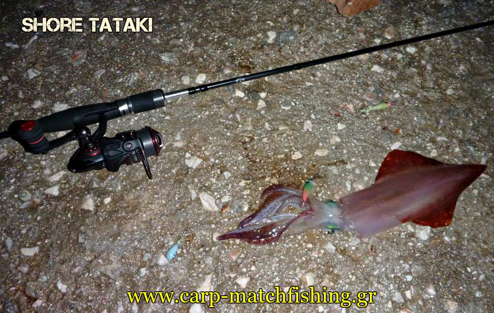shore-tataki-rod-reel-squid-carpmatchfishing