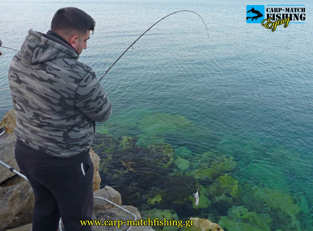 eging rocks geo squid hook topoi kalamarion carpmatchfishing