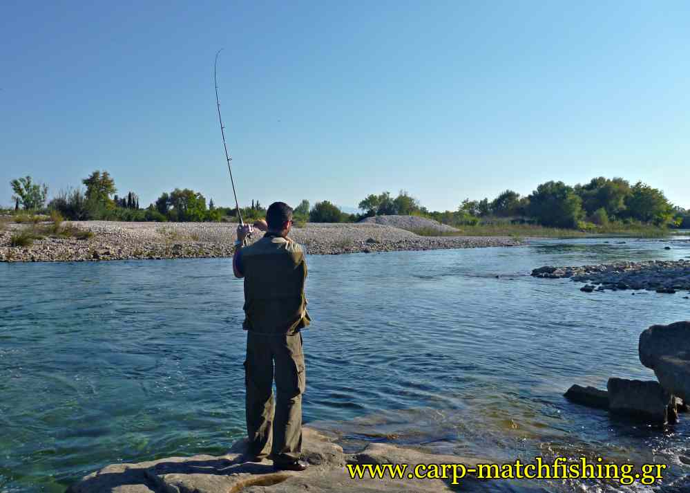 trout-fishing-rod-curve-lures-carpmatchfishing