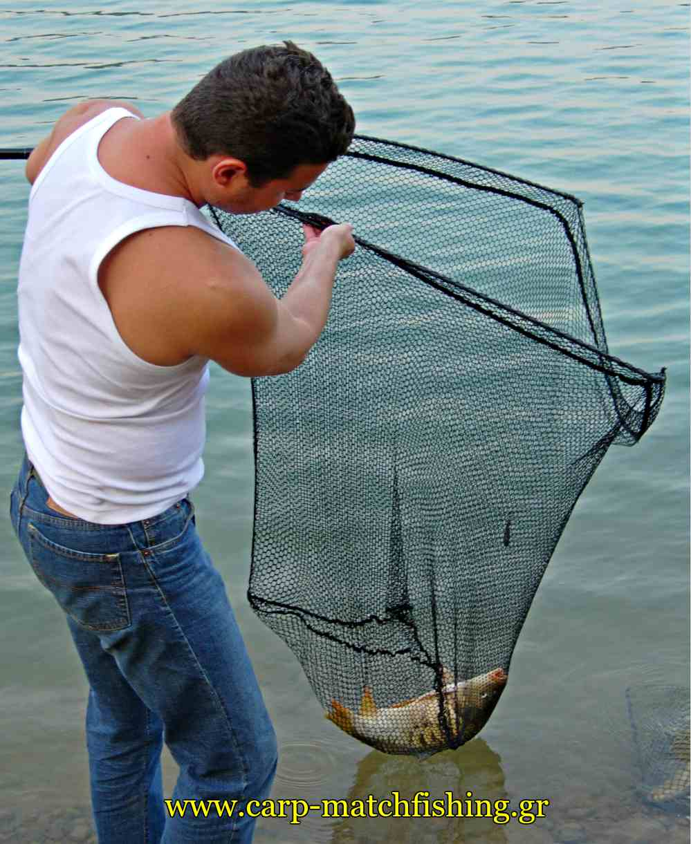 carp-net-catch-and-release-carpmatchfishing