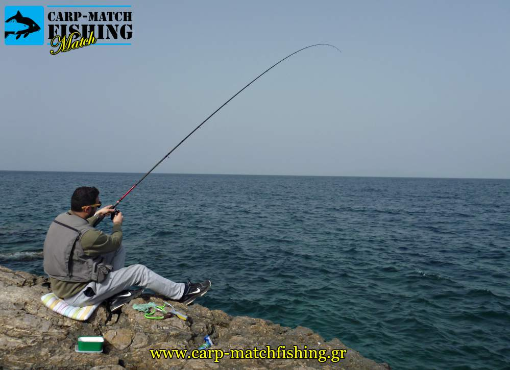 match rod fishing carpmatchfishing psarema sargou
