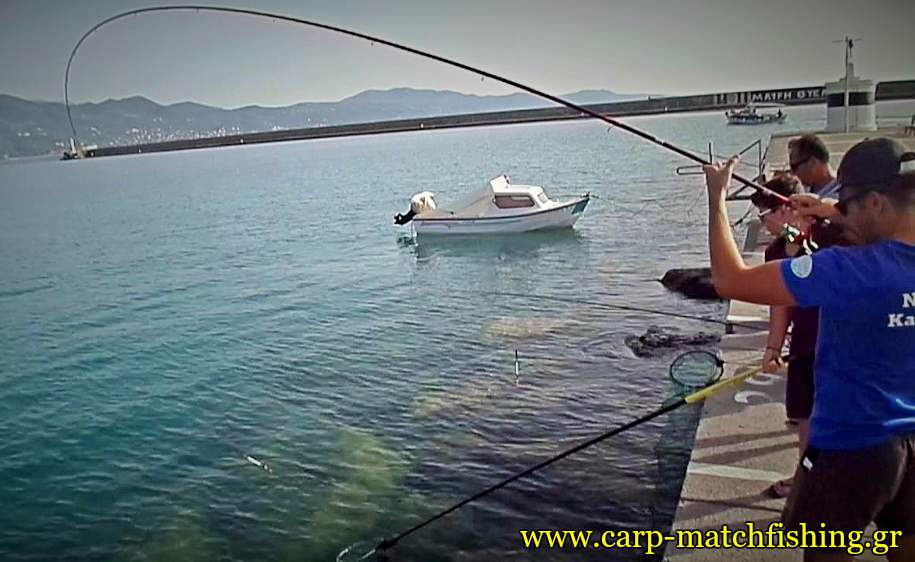 kefalos-match-fishing-big-curve-carpmatchfishing