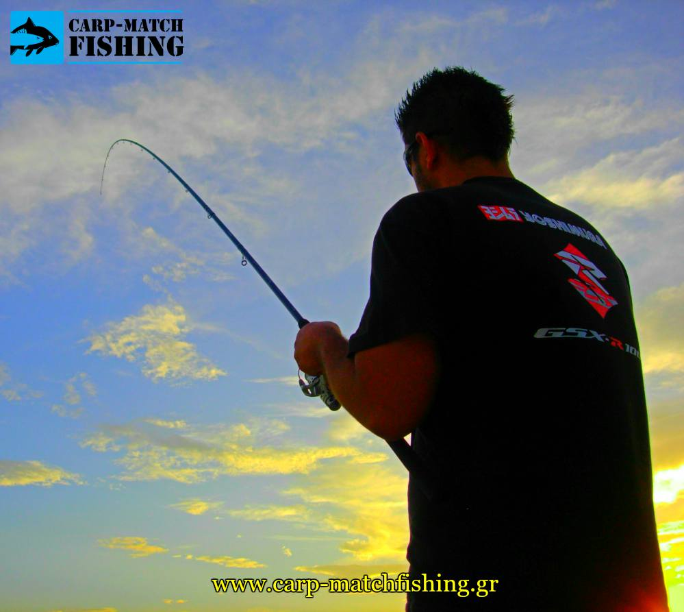 match rod test curve geo psarema carpmatchfishing