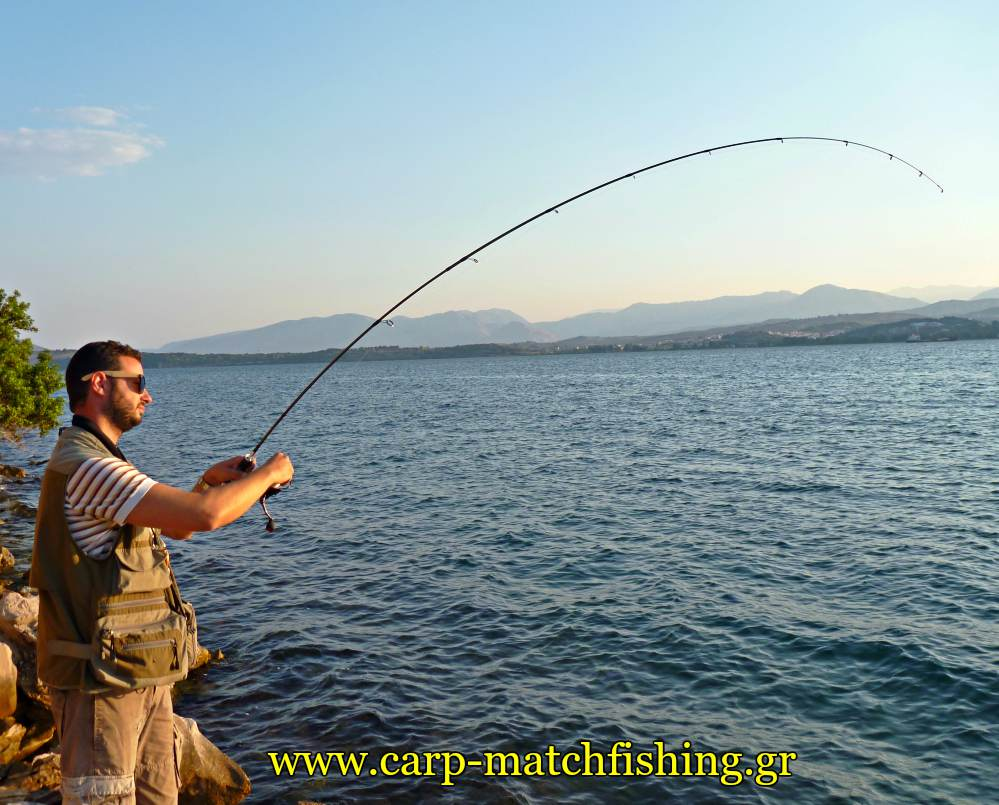 ajing lrf horse mackerel rod curve metal jigs carpmatchfishing