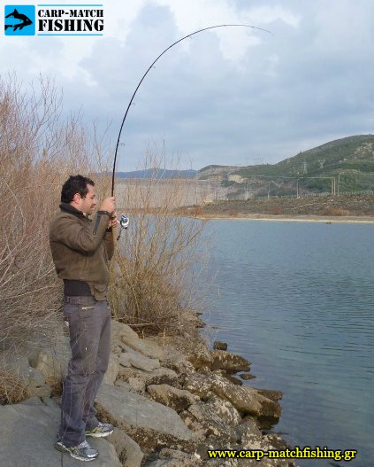 pestrofes rod curve big trout carpmatchfishing