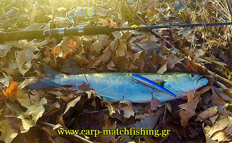 gofari-spinning-se-ekvoles-potamion-carpmatchfishing