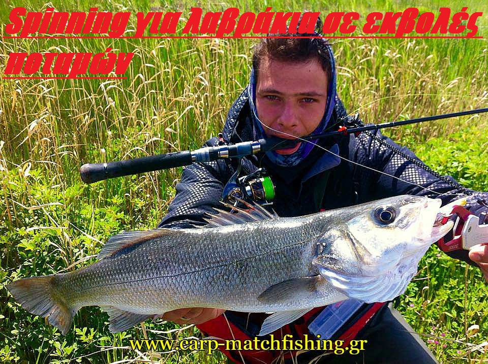light-spinning-gia-lavrakia-se-ekvoles-potamon-carpmatchfishing