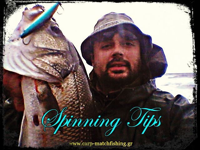 spinning-tips-sea-bass-gma-carpmatchfishing