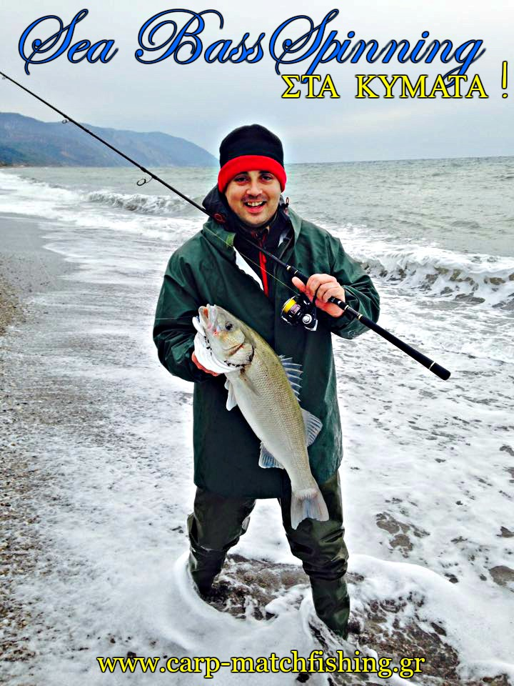 sea-bass-lavraki-spinning-at-waves-carpmatchfishing
