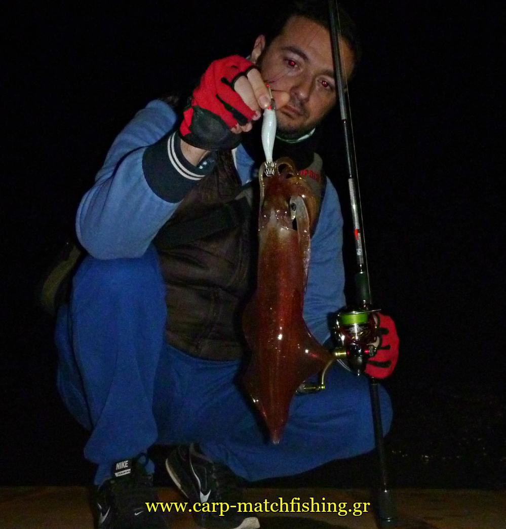 eging-squid-sfaltos-carpmatchfishing