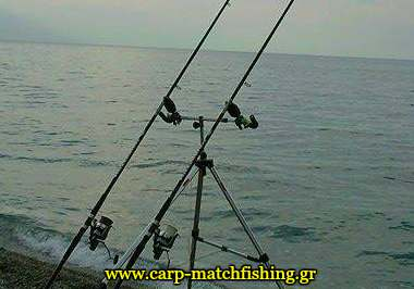 buzzers-surf-pod-rods-carpmatchfishing