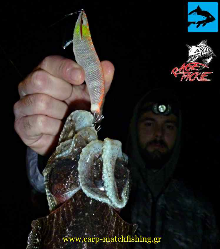 jerk series rage tackle eging kalmarieres carpmatchfishing
