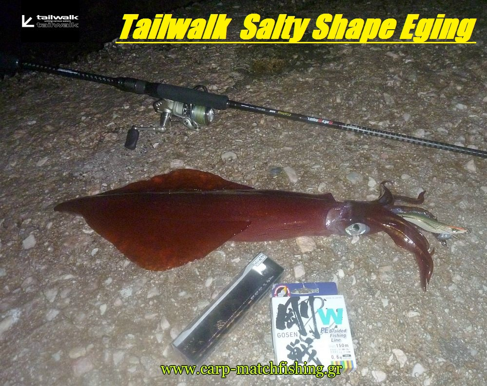 tailwalk-eging-on-carpmatchfishing.jpg-new
