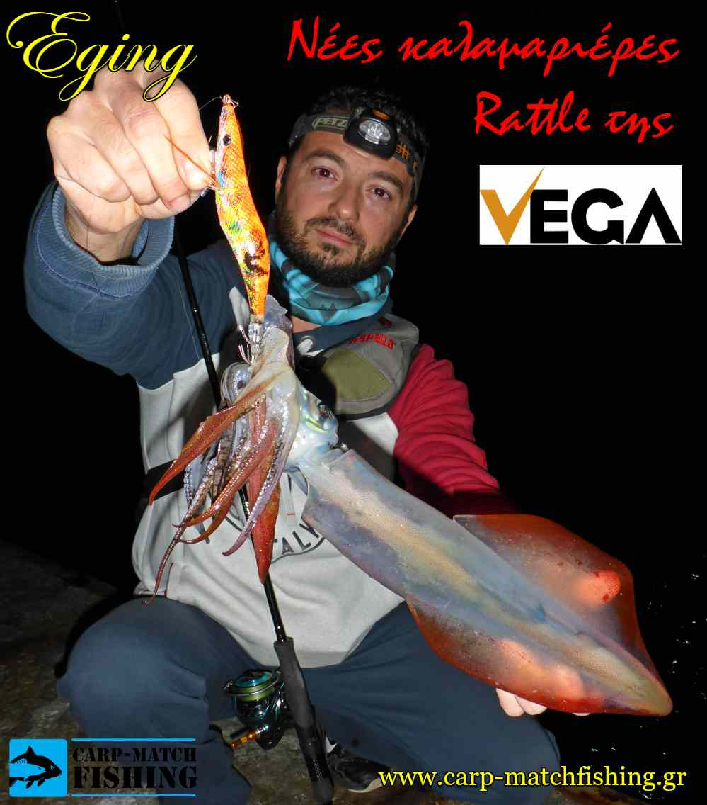 eging with vega rattle squid jigs sfaltos eging carpmatchfishing