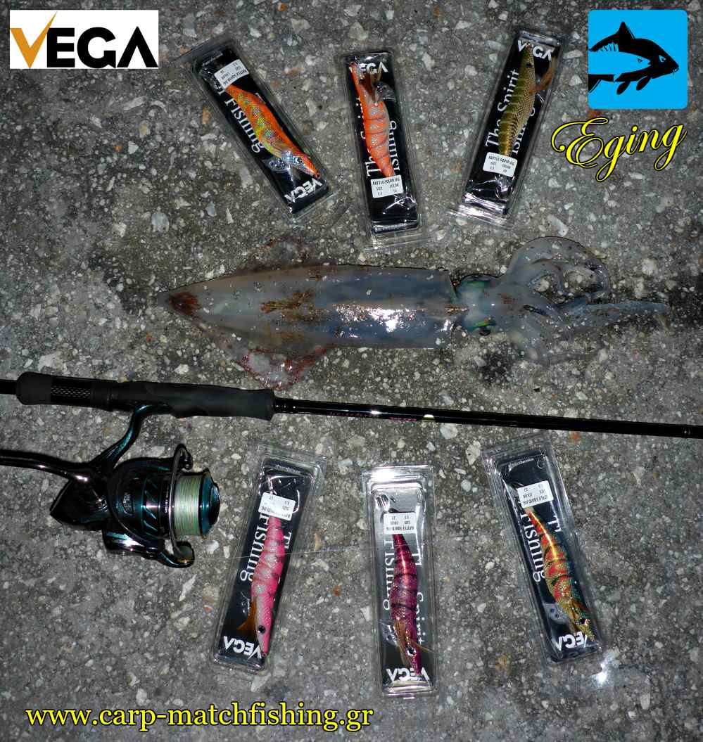 vega rattle squid jigs carpmatchfishing