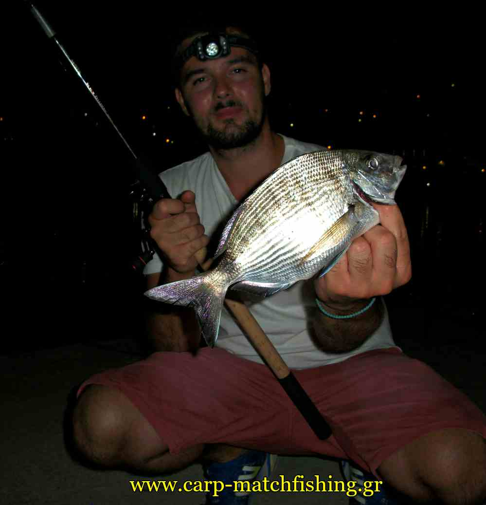 sargos-dim-acrovatis-matchfishing-carpmatchfishing