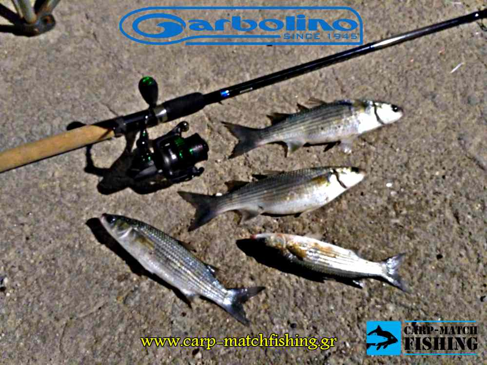 mullets bullet match rod garbolino carpmatchfishing
