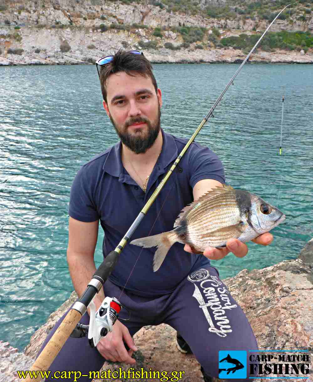 sargos native match420 vega pap carpmatchfishing