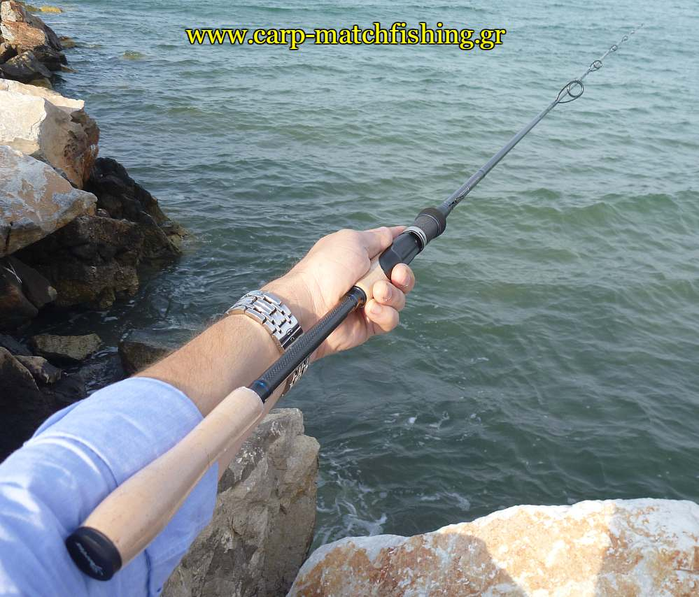 spinning-rod-sportex-blackarrow-carpmatchfishing