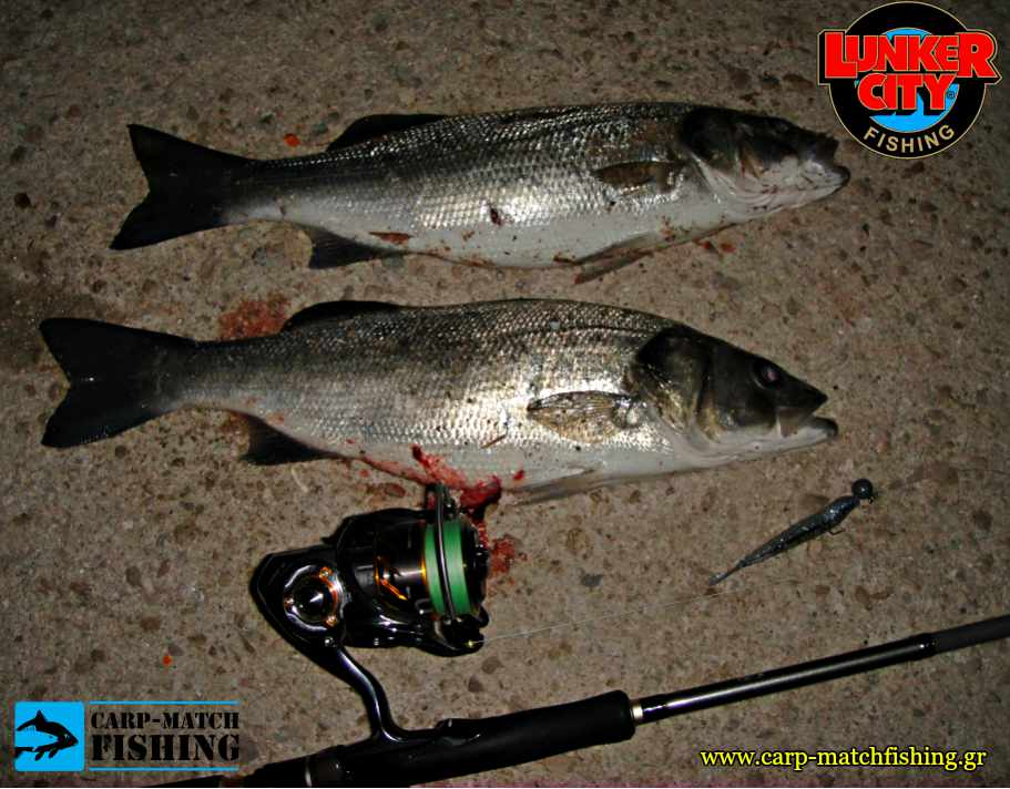 fin s fish lunker city silikoni lavrakia spinning carpmatchfishing