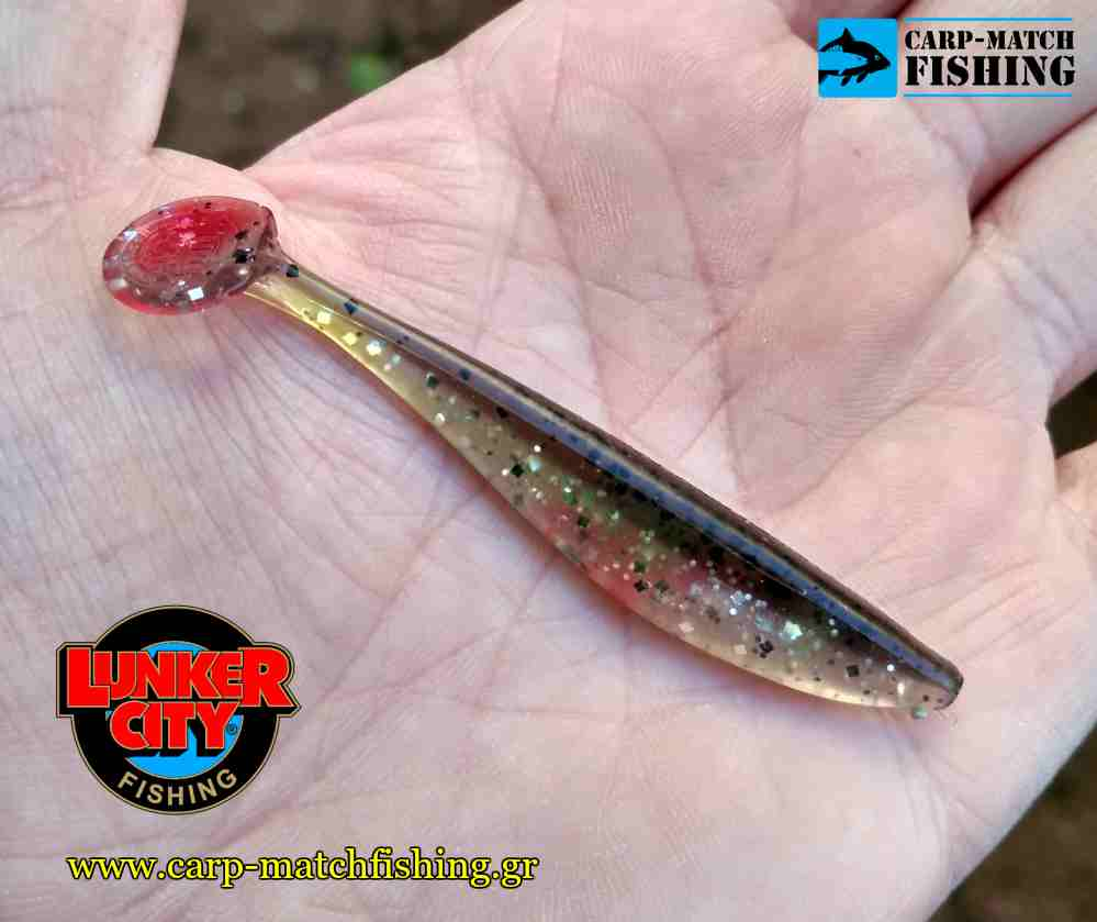 lunker city shad swinfish carpmatchfishing