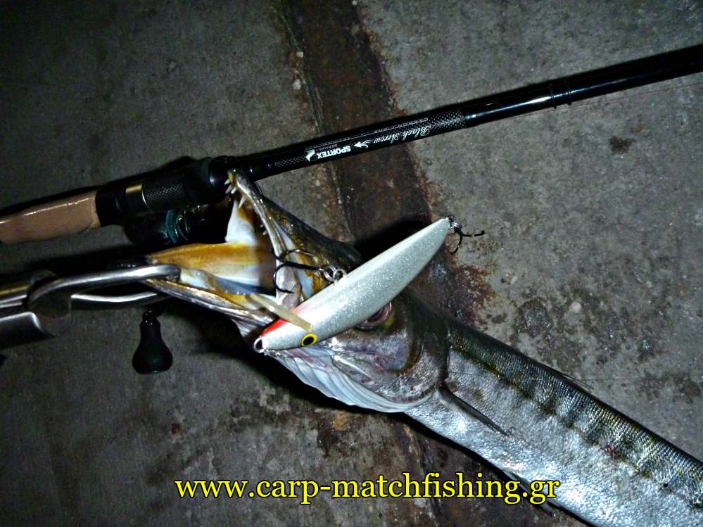 real-winner-loutsos-mouth-carpmatchfishing